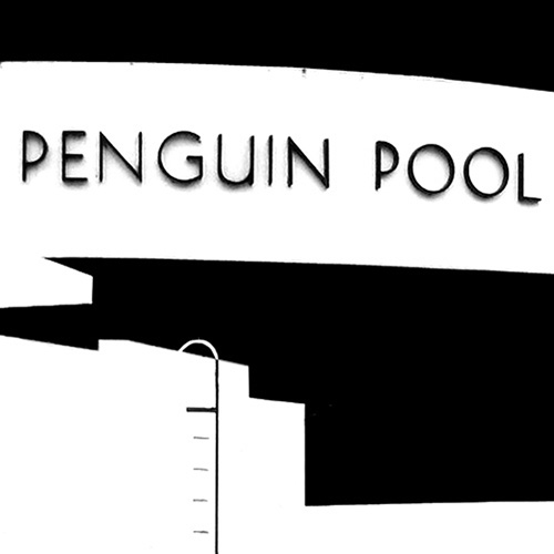 Cover of 'Penguin Pool' book.