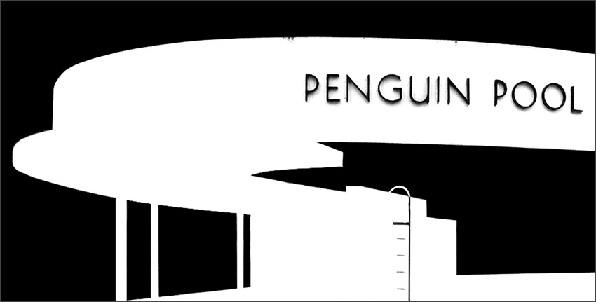 Penguin Pool cover illustration.