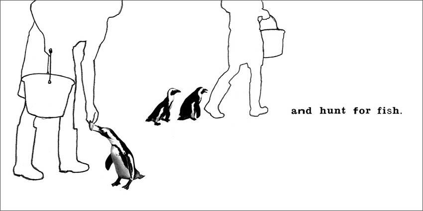 Penguin Pool illustration.